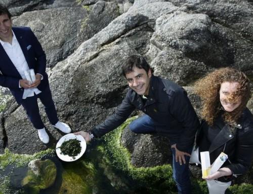 El alga gallega aspira a golear en Asia  –  Nuevo reportaje en LA VOZ de GALICIA